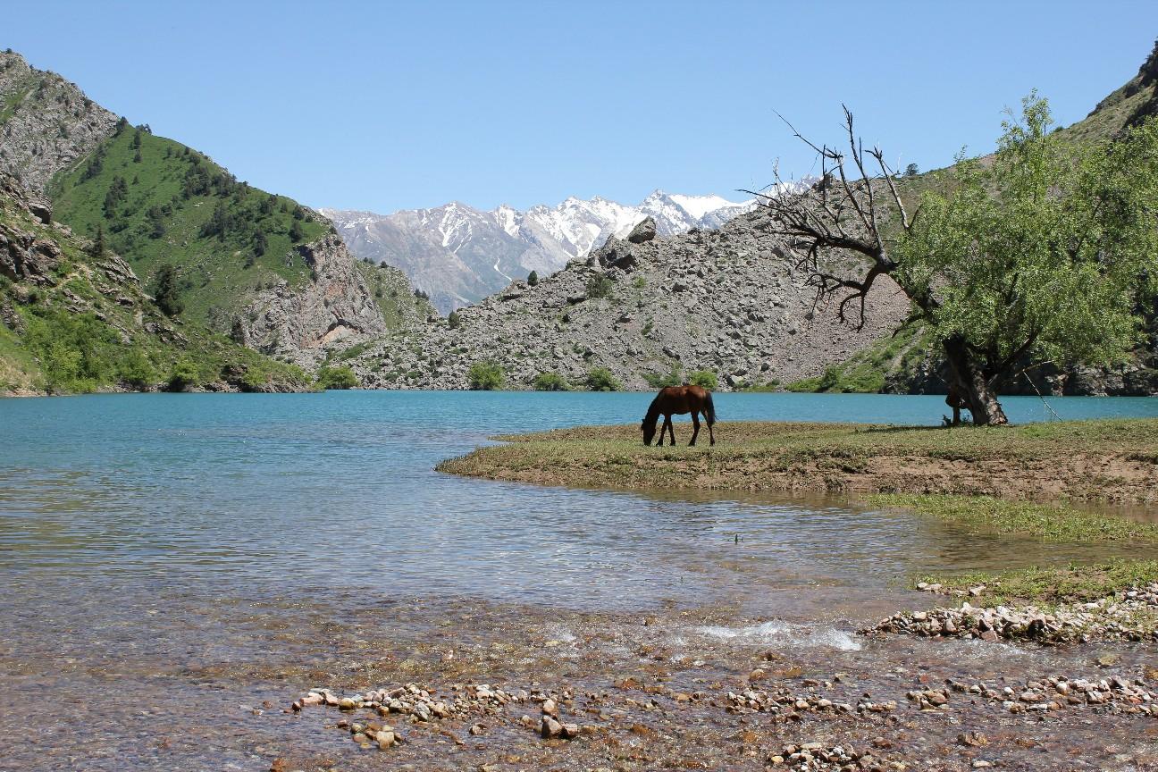 Tigrovaya Balka Nature Reserve